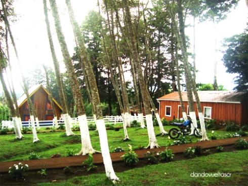 Bosques de Fraijanes