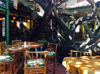dandovueltascr-treehouse-3